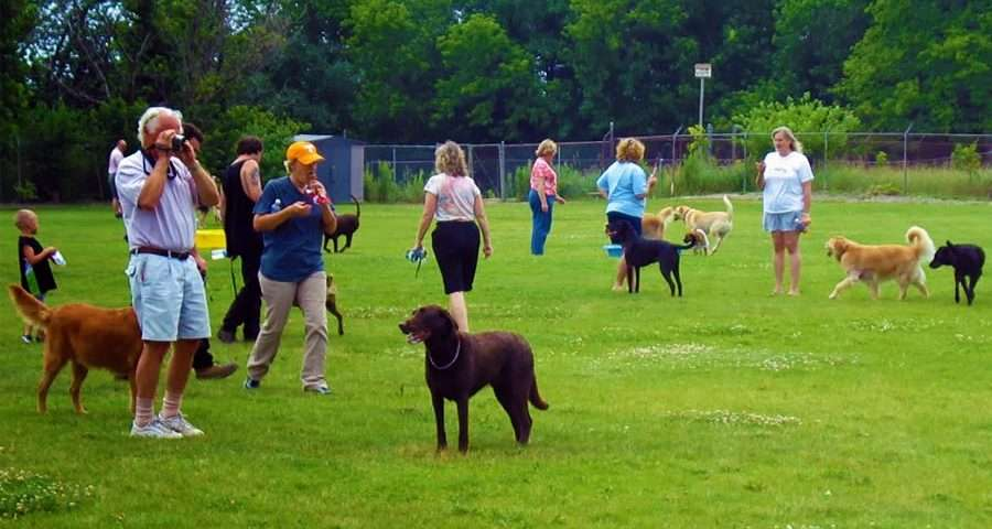Pelham's Long-Awaited Dog Park